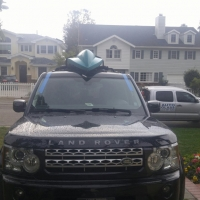 Range Rover windshield replacement